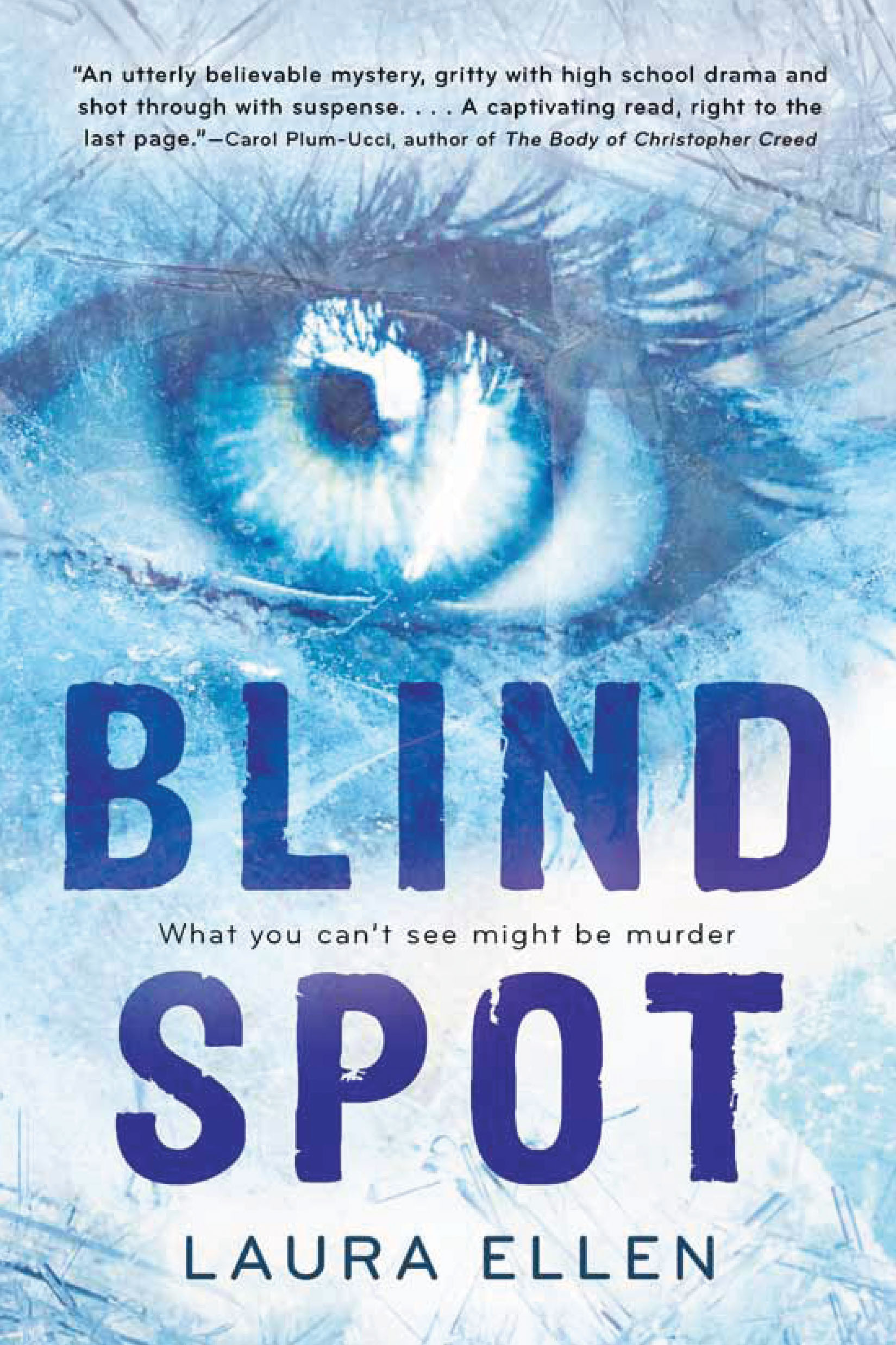Paperback edition of Blind Spot by Laura Ellen